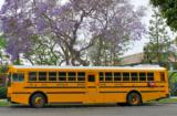 Los Angeles School