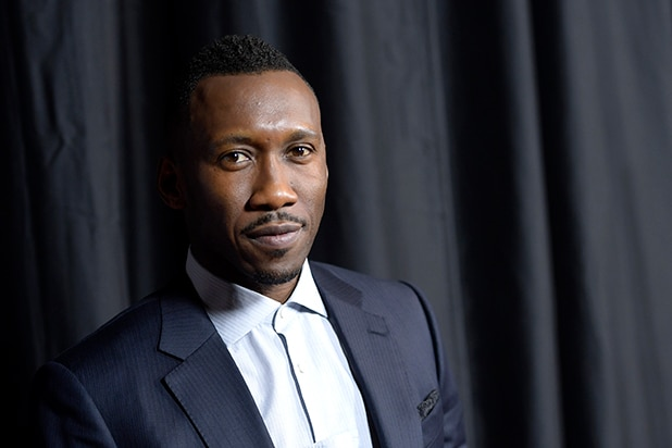 Mahershala Ali to Play Jack Johnson in Limited Series at HBO
