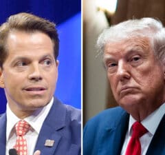 anthony scaramucci donald trump