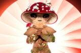 Mushroom Masked Singer
