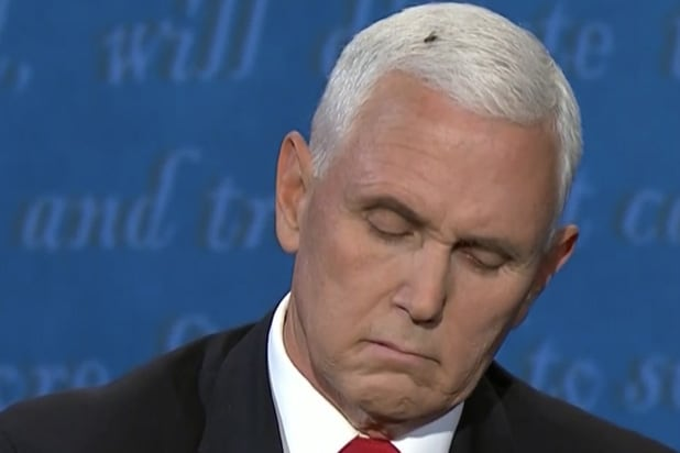 mike-pence-fly.jpg