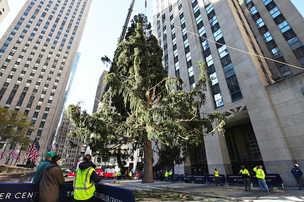 NBC's 'Christmas in Rockefeller Center' Sets Date to Light Up That Sad-Looking Tree (Photo)