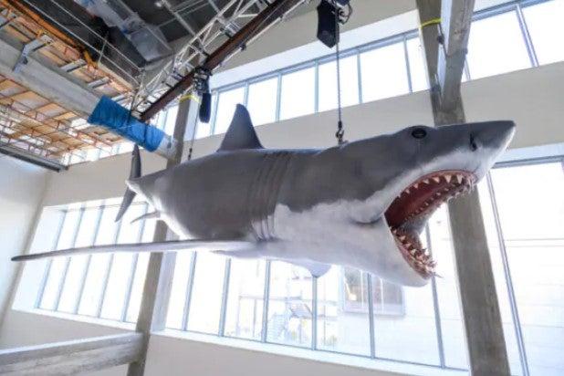 Bruce the shark