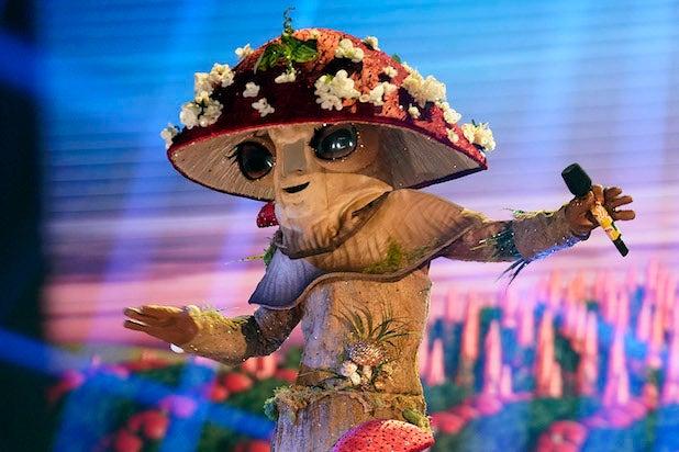 Masked Singer Mushroom