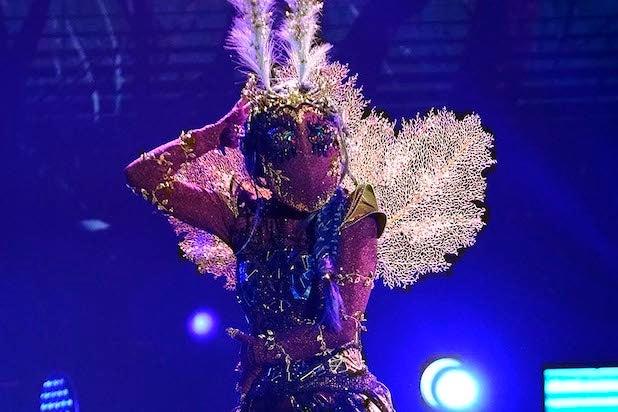 Masked Dancer Moth Elizabeth Smart