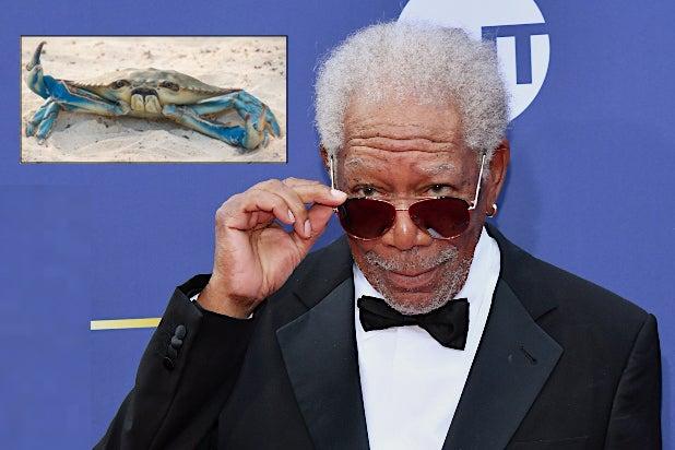 Morgan Freeman Barb and Star Go to Vista Del Mar Crab