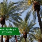 palm springs city sign palm trees