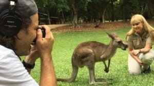 Kangaroo: A Love Hate Story
