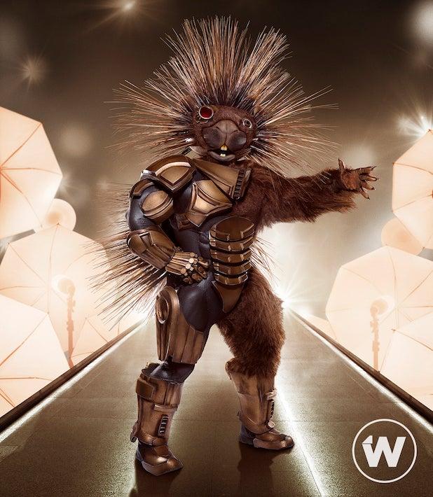 Porcupine Masked Singer Season 5