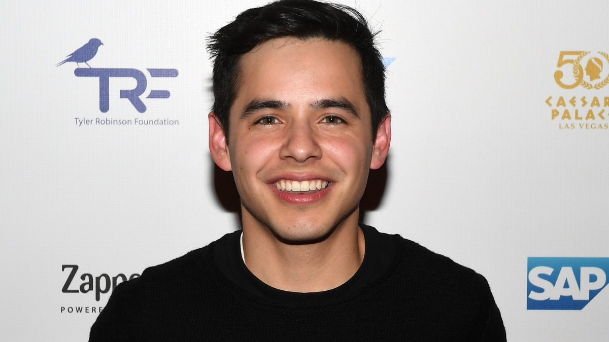 'American Idol' Alum David Archuleta Comes Out as Bisexual, Urges Religious Acceptance.jpg