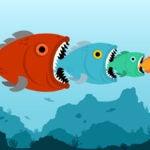 big fish little fish indies