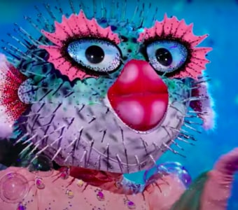 The Masked Singer Pufferfish